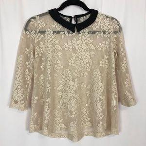 Zara Trafaluc Ivory Sheer Lace Blouse Sz S